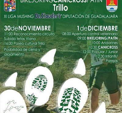 V Canicross de Trillo
