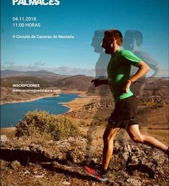 VII Trail del Picozo
