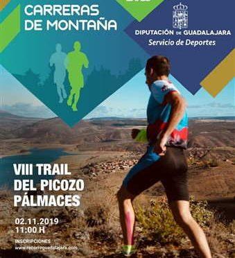 VIII Trail del Picozo